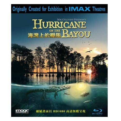 海灣上的颶風 藍光BD Hurricane of the Bayou 以卡翠娜颶風為故事背景的劇情紀錄片 (音樂影片購)