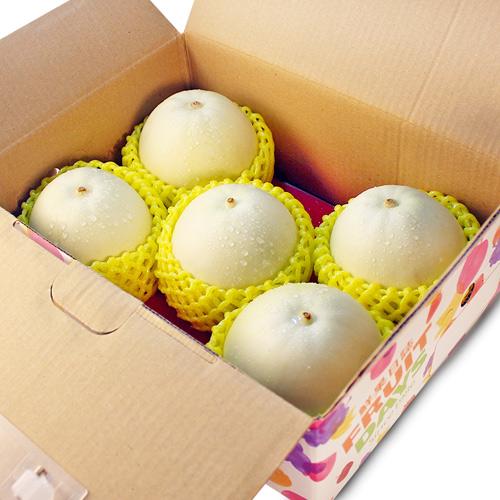 【鮮果日誌】 嘉義特級美濃瓜(3.5斤禮盒裝)