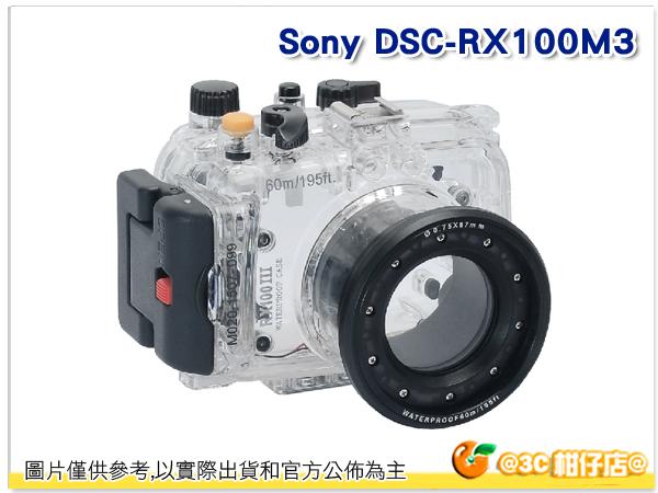 Sony DSC - RX100M3 潛水殼 - 黑 浮潛 游泳 海邊 活動 相機 下水 拍照 佳美能公司貨