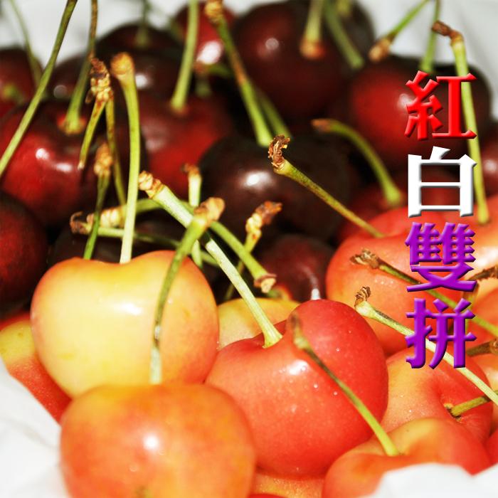 ✿仲菁✿美國空運櫻桃**紅白雙拼**9.5ROW/1kg精緻禮盒裝-免運費