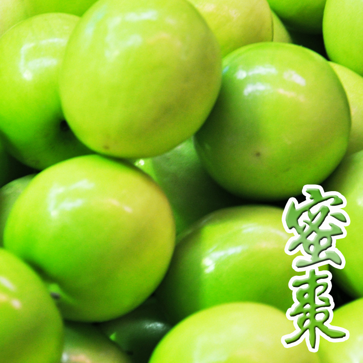 ✿仲菁✿南臺灣網室栽培冬季限量-牛奶蜜棗3台斤-免運費
