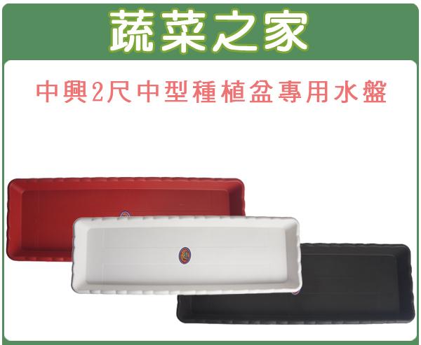 【蔬菜之家015-F52】中興2尺中型種植專用盆專用水盤(磚紅色、棕色、白色)