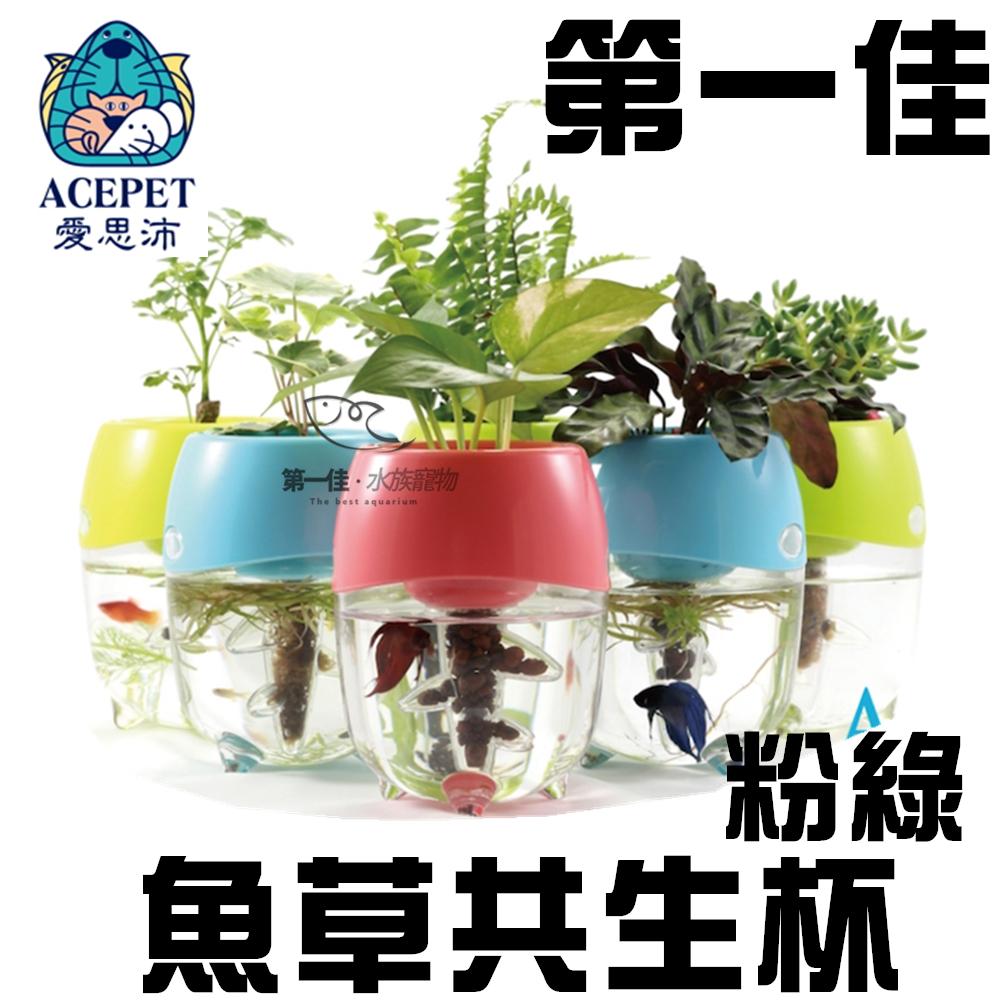 [第一佳 水族寵物]ACEPET愛思沛 魚草共生杯-粉綠 PP-FF922-G 台灣製 迷你小魚缸 水族箱 飼育箱