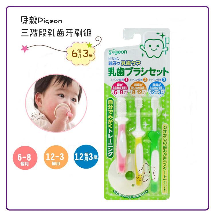 【大成婦嬰】Pigeon 貝親 三階段乳齒牙刷組(6~16個月以上)10541 安全牙刷