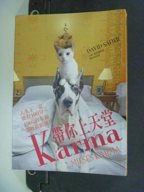 【書寶二手書T8/翻譯小說_IAR】Karma帶你上天堂_原價300_大衛.薩菲爾