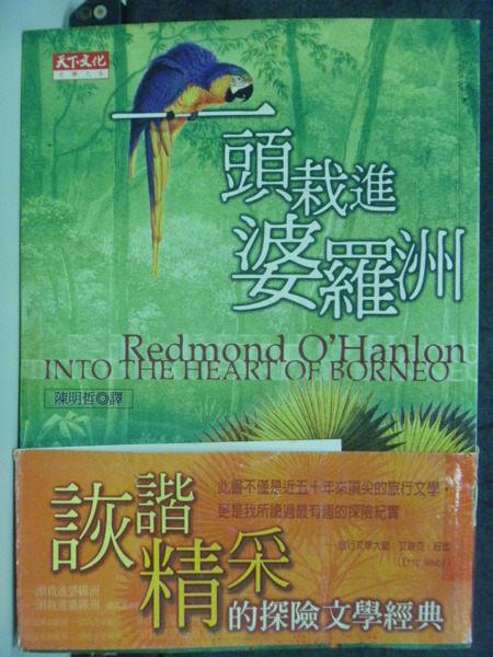 【書寶二手書T3╱翻譯小說_GMZ】一頭栽進婆羅洲_原價280_雷蒙.歐漢倫/著