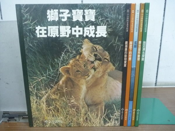 【書寶二手書T2/少年童書_RGF】小小探險家叢書精選_野生貓科動物等_6本合售