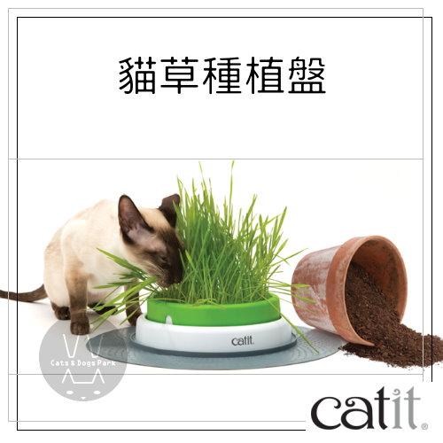 +貓狗樂園+ CATIT|喵星2.0樂活。貓草種植盤(不含種子)|$590