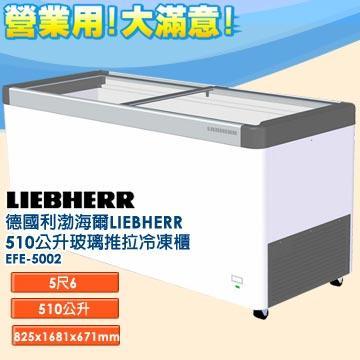 德國利勃 海爾 LIEBHERR 510公升 玻璃推拉冷凍櫃 EFE-5002 指針式溫度計  雙重鑄工輪子