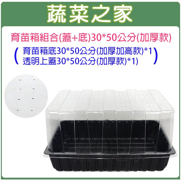 【蔬菜之家005-C94】育苗箱組合(蓋+底)30*50公分(加厚款)