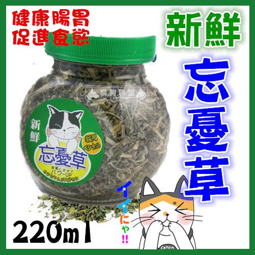 +貓狗樂園+ 貓咪忘憂草【貓草薄荷。220ml】100元