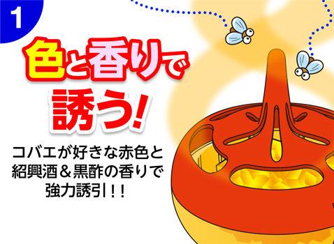 日本製天然果蠅屋 防果蠅 安全乾淨衛生280916海渡