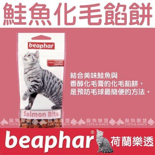 +貓狗樂園+ 荷蘭beaphar【樂透愛貓。鮭魚化毛餡餅。大。150g】270元