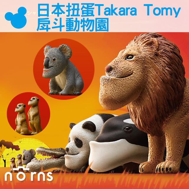 NORNS 【日本扭蛋 Takara Tomy戽斗動物園】厚到星球 戽斗動物園 熊貓之穴 轉蛋 戽斗生物