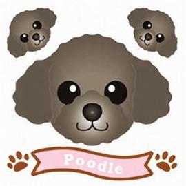 FIELD&POINT 超可愛狗狗車貼(黑貴賓狗)