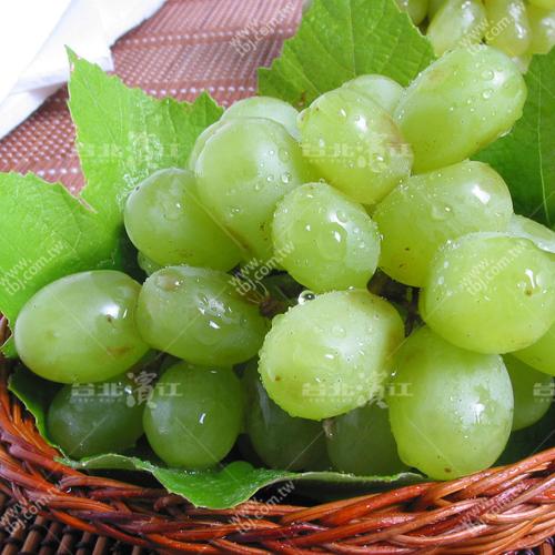 補貨中【台北濱江】美國加州無籽綠葡萄1KG裝