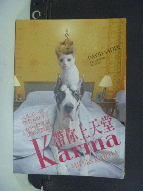 【書寶二手書T6/翻譯小說_HFJ】Karma帶你上天堂_大衛.薩菲爾