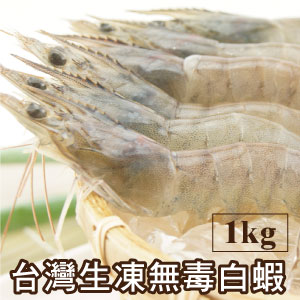 【築地藏鮮】台灣生凍無毒白蝦(1Kg/盒)1盒約50~60尾