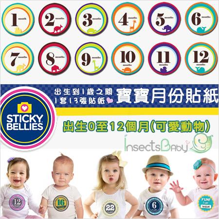 +蟲寶寶+【美國Sticky Bellies  】新生寶寶創意好禮-寶寶月份貼紙0-12M-(可愛動物)《現+預》