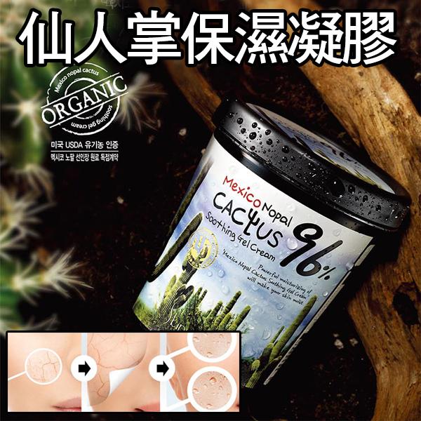 韓國 Skinion 96% 墨西哥仙人掌 水循環活氧保濕膠 (300ml)