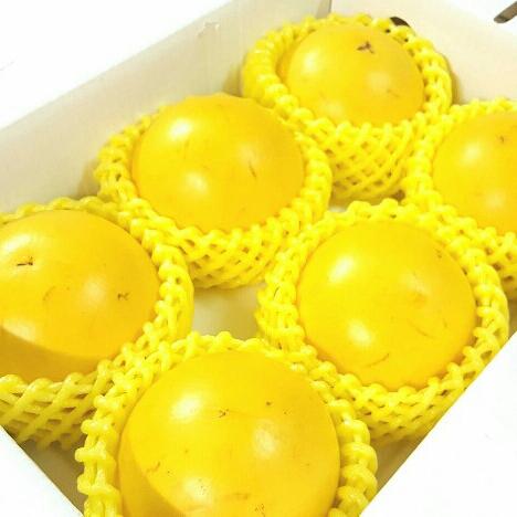 【免運】充滿膠質的黃金果6大顆禮盒799元。【10/7 PM23:59加碼!全館滿$600最高折$100✶10/8 AM9:59最高現折$132✶】♡♡。阿真媽媽保證好吃。超值得。