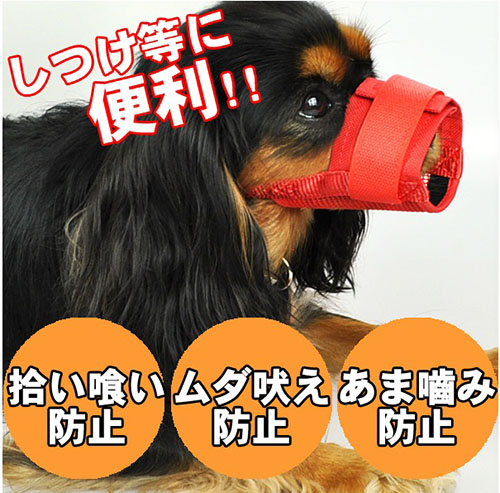 【小樂寵】透氣網眼口罩/止吠&預防亂食