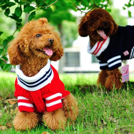 【小樂寵】麻花編織海軍領針織毛衣.兩色