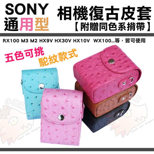 【小咖龍】 Sony 索尼 通用相機包 RX100 M2 m3 m4 HX9V HX30V HX10V WX30 WX100 W690 相機皮套