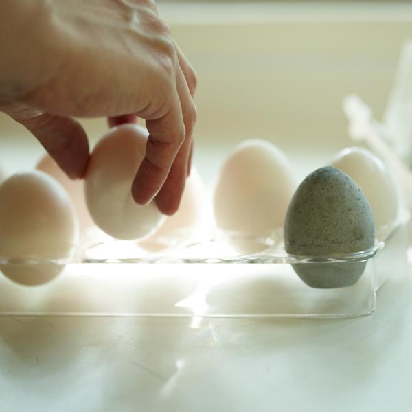 日本製 Soil 珪藻土濕度調節 除濕乾燥蛋 調濕脫臭 單顆 *夏日微風*