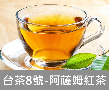 【摩根拉茶】台茶8號-阿薩姆紅茶(2.6克X20包)