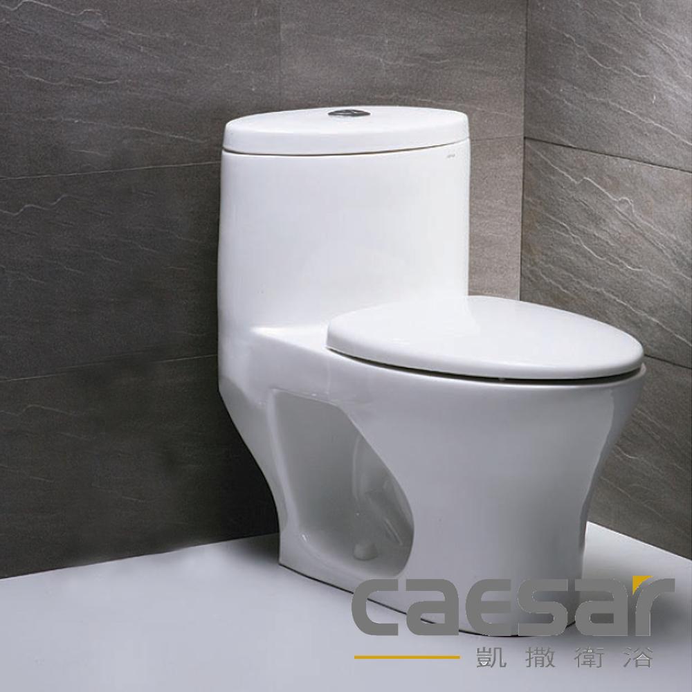 【caesar凱撒衛浴】二段虹吸單體馬桶-40公分(C1472)
