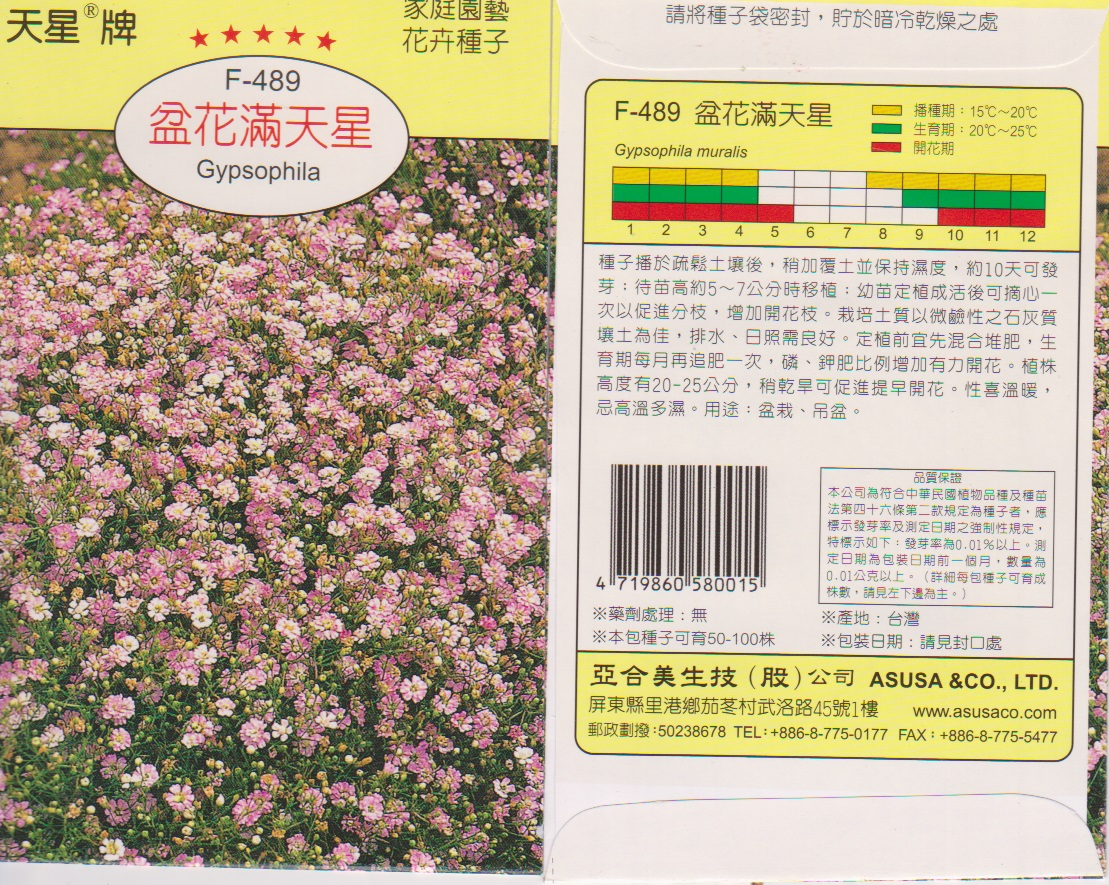 【尋花趣】天星牌 盆花滿天星(粉紅滿天星) 花卉種子 每包約350 粒 保證新鮮種子