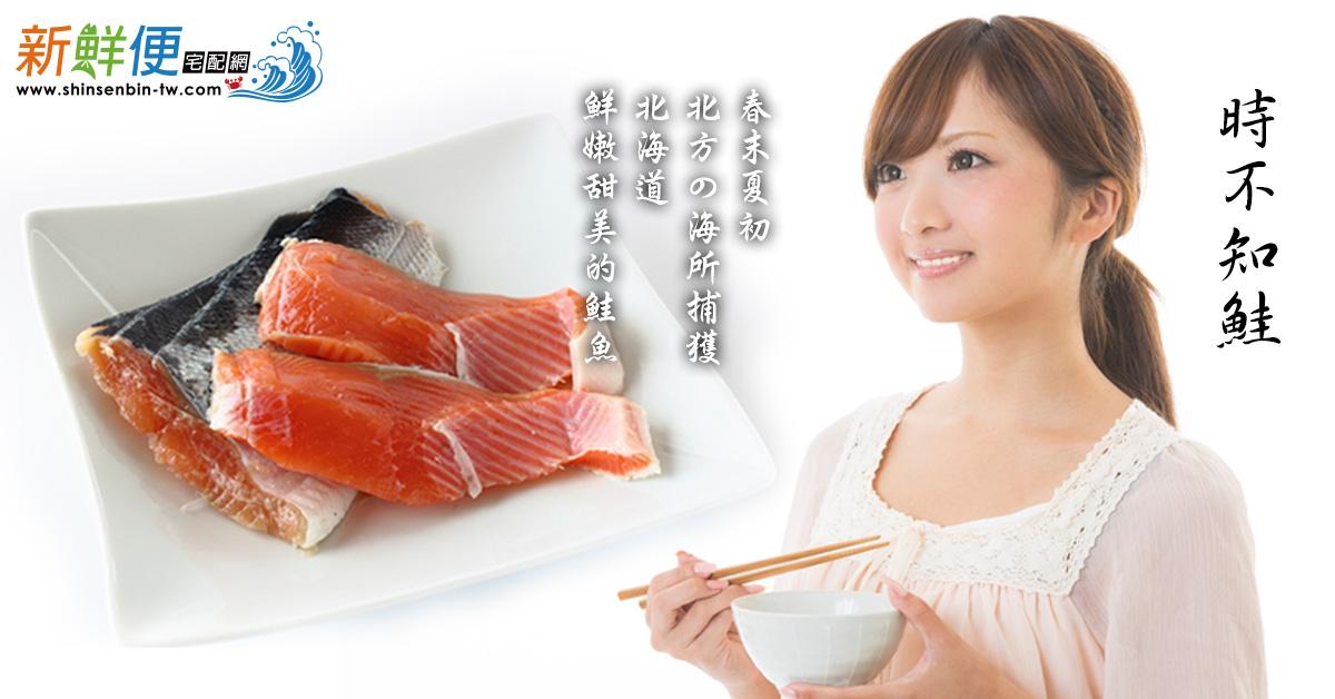 北海道天然野生時鮭