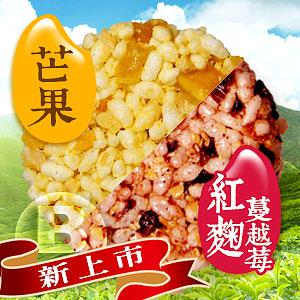 旅人的幸福滋味【B】款 (芒果米香+紅麴蔓越莓米香)