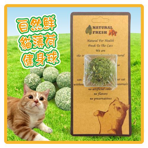 【力奇】自然鮮 貓薄荷健身球-單顆(45-NF-011) -80元【快來讓貓咪一起動吃動】>可超取(I102A11)