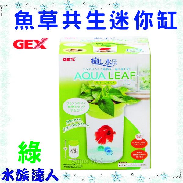 【水族達人】日本GEX《魚草共生迷你缸  綠色 AZ-681-02》生態缸 圓柱型 魚草共生缸 特價