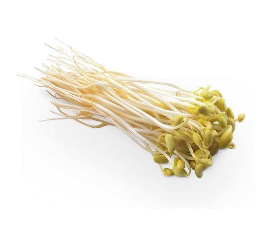 豆芽菜精裝包