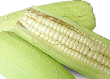 糯米玉米(1kg)