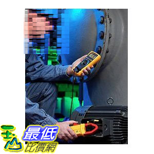 [美國直購 ShopUSA] 萬用表 Fluke 175 ESFP True RMS Digital Multimeter, (ENG, SP, FR, POR) $8999