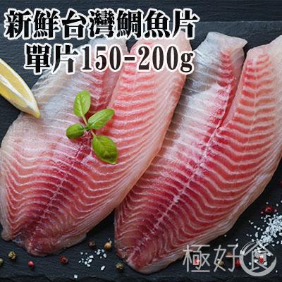 極好食?新鮮台灣鯛魚片-單片150G-200G
