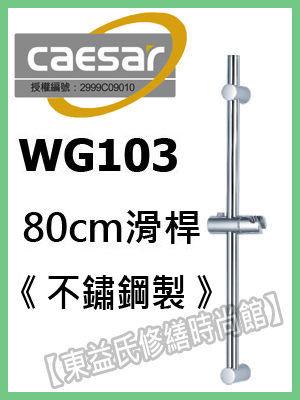 【東益氏】CAESAR凱撒精品衛浴WG-103不鏽鋼滑桿 另售電光牌 京典 TOTO 龍天下 淋浴柱 花灑 蓮蓬頭