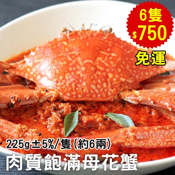 【免運】極好食?下殺5折↘秋季肥美母花蟹6隻(約6兩/隻)