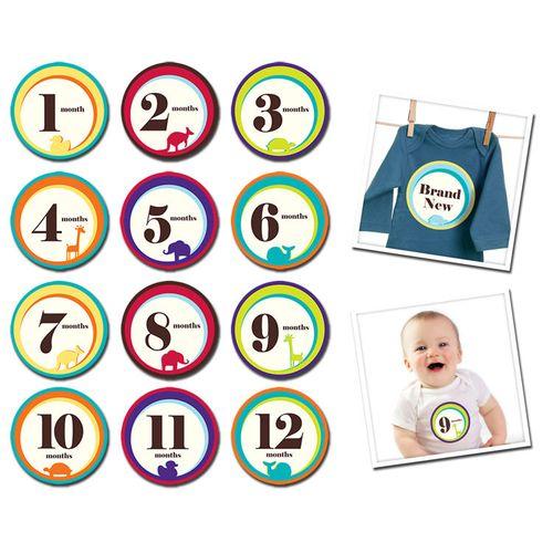 ★衛立兒生活館★美國Sticky Bellies 寶寶月份貼紙1-12M(可愛動物)