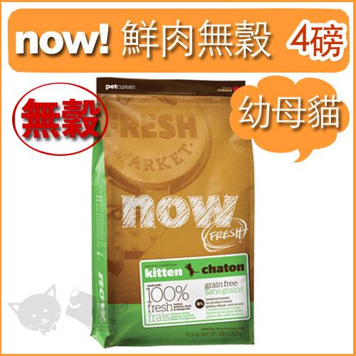 《NOW!》Fresh鮮肉無穀天然糧-幼貓配方 4磅 / 貓飼料