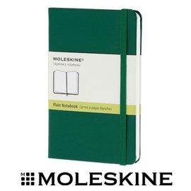 義大利 MOLESKINE 66136293 彩色素面筆記本/ 綠192 /P