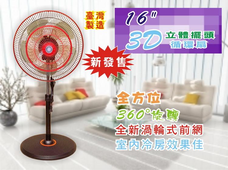 fan10300019.JPG