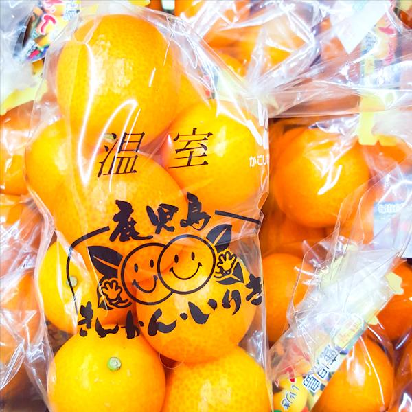 ( 完售 )【 日本鹿兒島溫室袋裝金桔 】免運~