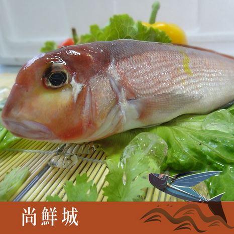 【尚鮮網】 現流馬頭魚 (200g)+-5%