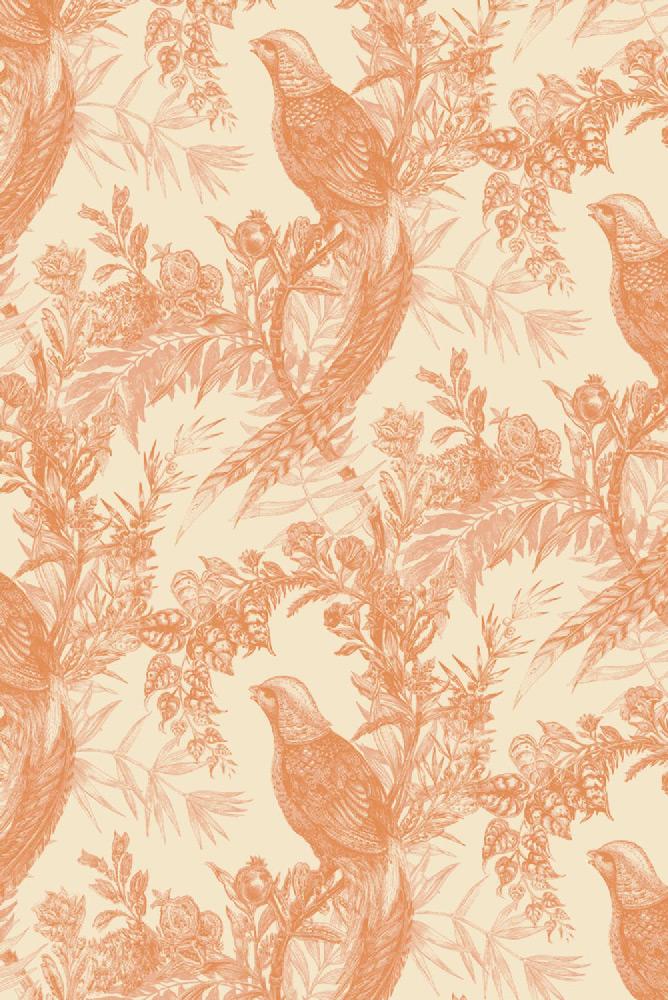 Timorous Beasties / Pheasant / HS/PHES/4004/06 壁紙 (訂貨單位52cm×10m/卷)