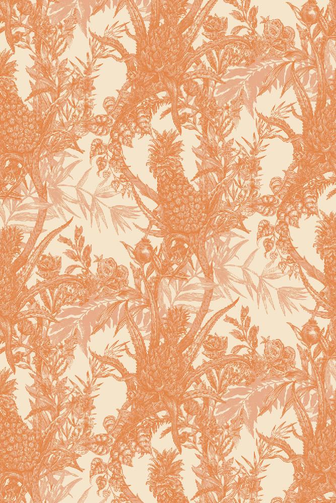 Timorous Beasties / Pineapple / HS/PINE/4004/06 壁紙 (訂貨單位52cm×10m/卷)